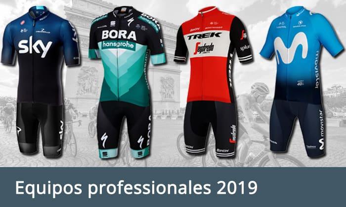Equipos professionales 2019